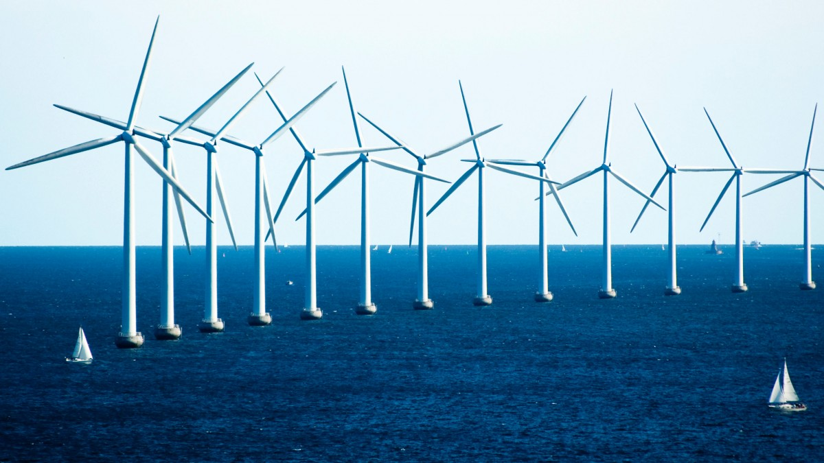 Policy, Not Tech, Spurred Danish Dominance in Wind Energy