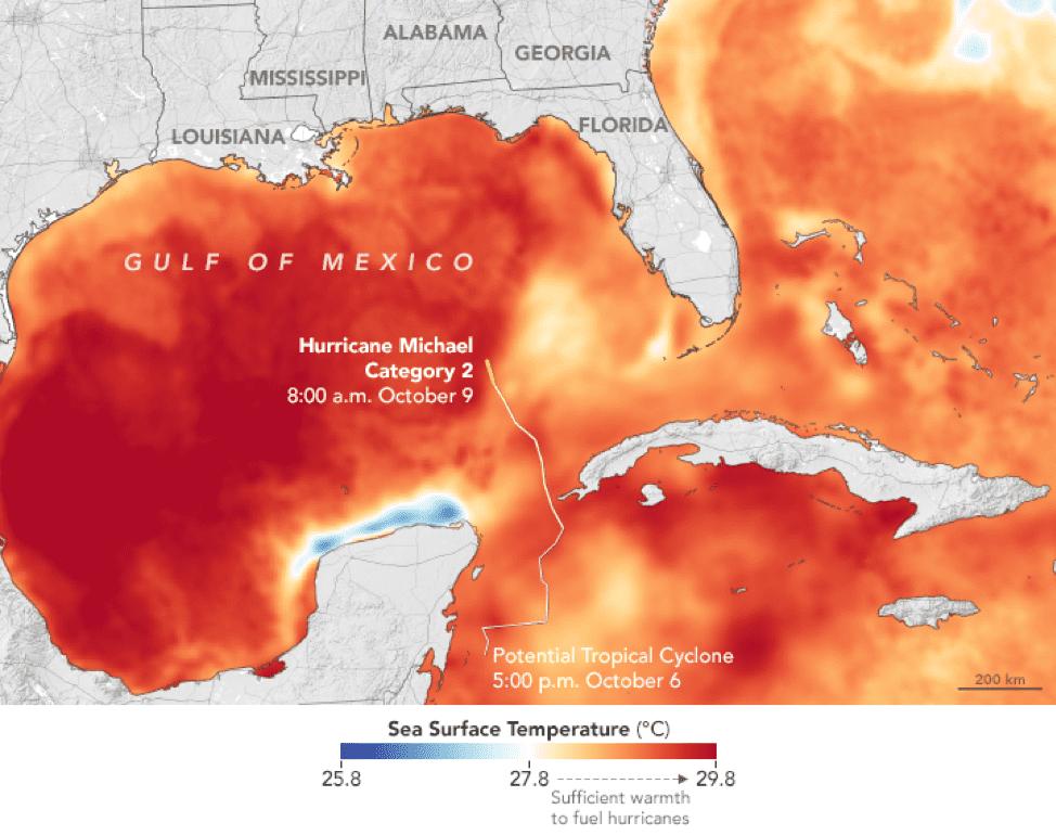 Water ocean temperatures around Florida as Hurricane Michael evolved. Illustration: NASA EOSDIS/LANCE