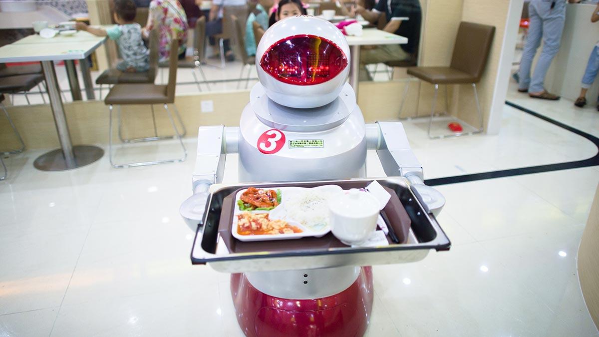 robots, robots stealing jobs, technological adaptation, reskilling workers, redundant labor force
