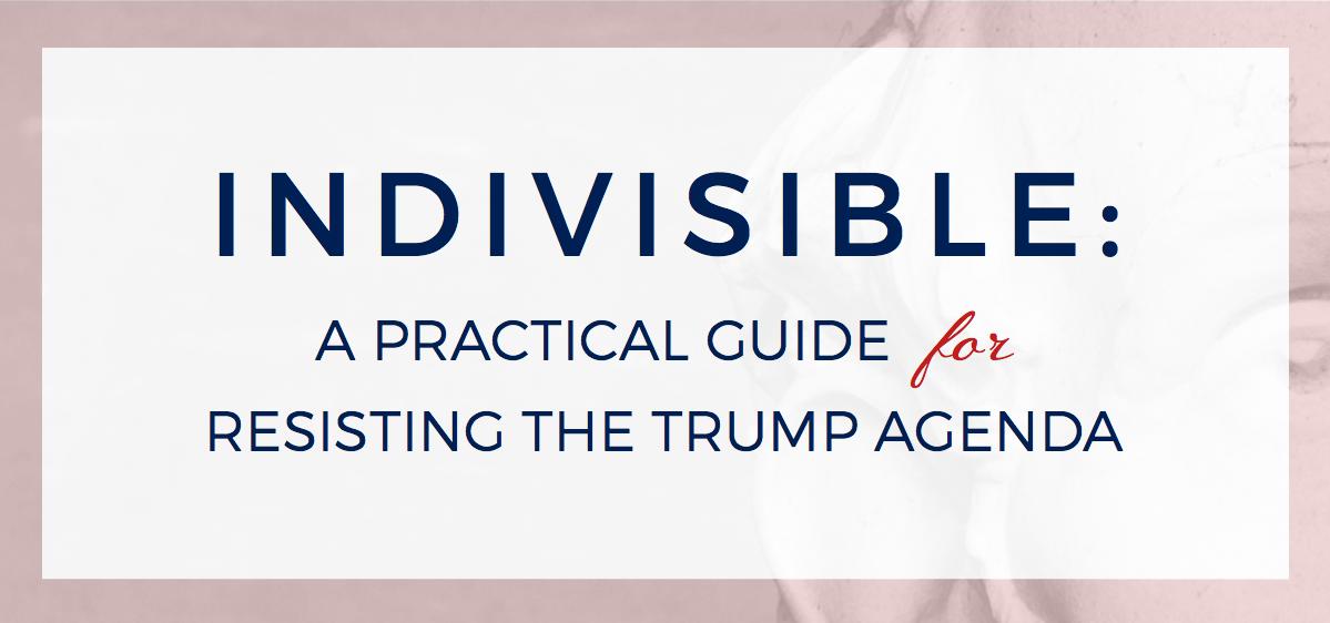Indivisible, Trump resistance, anti-Trump protests, anti-Trump movement, Trump agenda, Tea Party, pressuring Congress