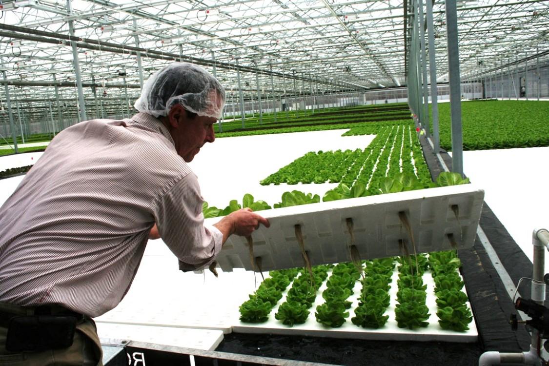 Illinois Worker Co-operative Alliance, Rahm Emanuel, privatization, Chicago cooperative economy, Amara Enyia, Kola Nut Collaborative