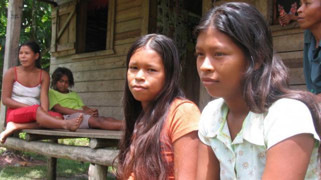 Nicaraguan indigenous struggles, Miskitu people, Mayagna people, Bosawas Biosphere Reserve, North Caribbean Autonomous Region, colonos, United Nations Declaration on the Rights of Indigenous People
